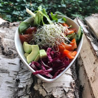 schwesterherzen-birgit-wöhler-vegan-vegetarisch-catering
